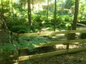 Wood Fence Garner NC, Privacy Fence Garner NC,Fence Contractor Garner NC
